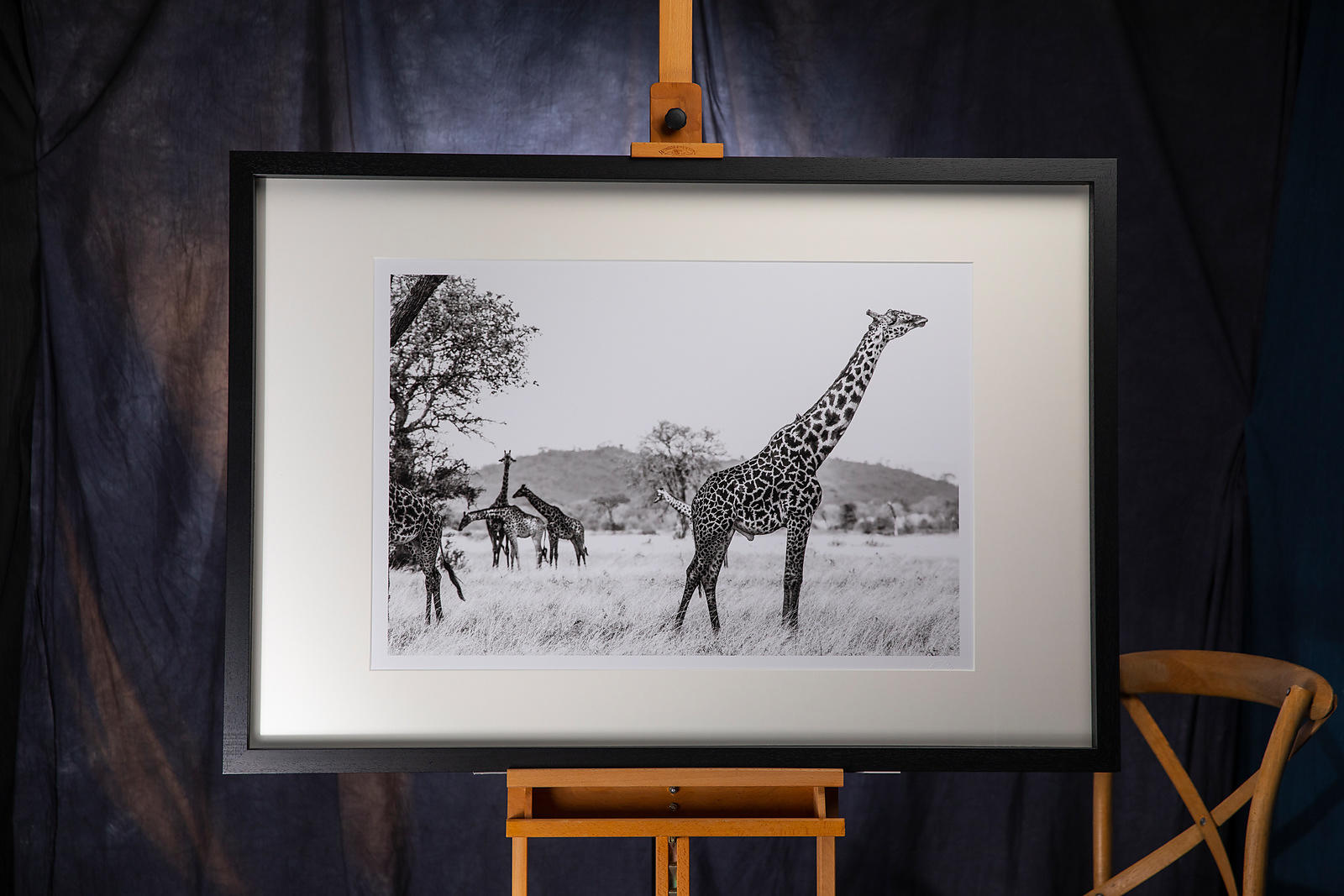 Singita Giraffe: Tanzania 2019: Photographer: Neil Emmerson £975 including UK VAT