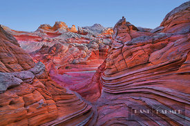 Sandstone erosion landscape in White Pocket - North America, USA, Arizona, Coconino, Vermillion Cliffs, White Pocket (Colorad...