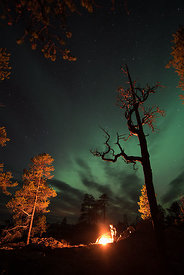 Fire and northern light in Femundsmarka