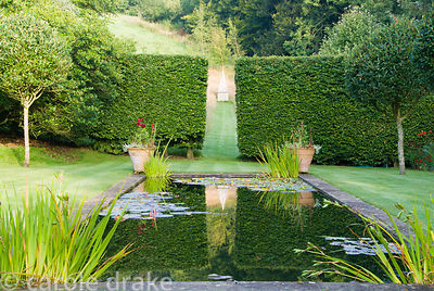 Formal pond lined by standard Crataegus x lavallei in the upper garden where a gap between beech hedges frames an obelisk set...