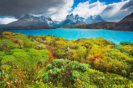 Mountain impression Cuernos del Paine and Lago Pehoe - South America, Chile, Magallanes, Torres del Paine, Lago Pehoe (Patago...