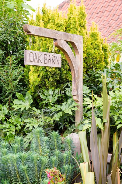 House sign amongst bold foliage shapes of phormium, euphorbia, Fatsia japonica and golden yew at Oak Barn, Newark, Notts in S...