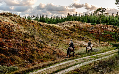 Danish women riding horses in Thy woods, Denmark 9