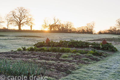 The vegetable garden under a light layer of frost as sun rises on an April morning. Barnsley House, Cirencester, Glos, UK