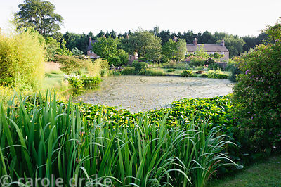 Pond. Felley Priory, Underwood, Notts, UK