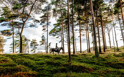 Woman riding horse in Thy, Denmark 10