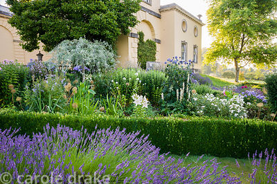 Box edged beds at the top of the double summer herbaceous borders designed by Xa Tollemache feature phlox, Verbena bonariensi...