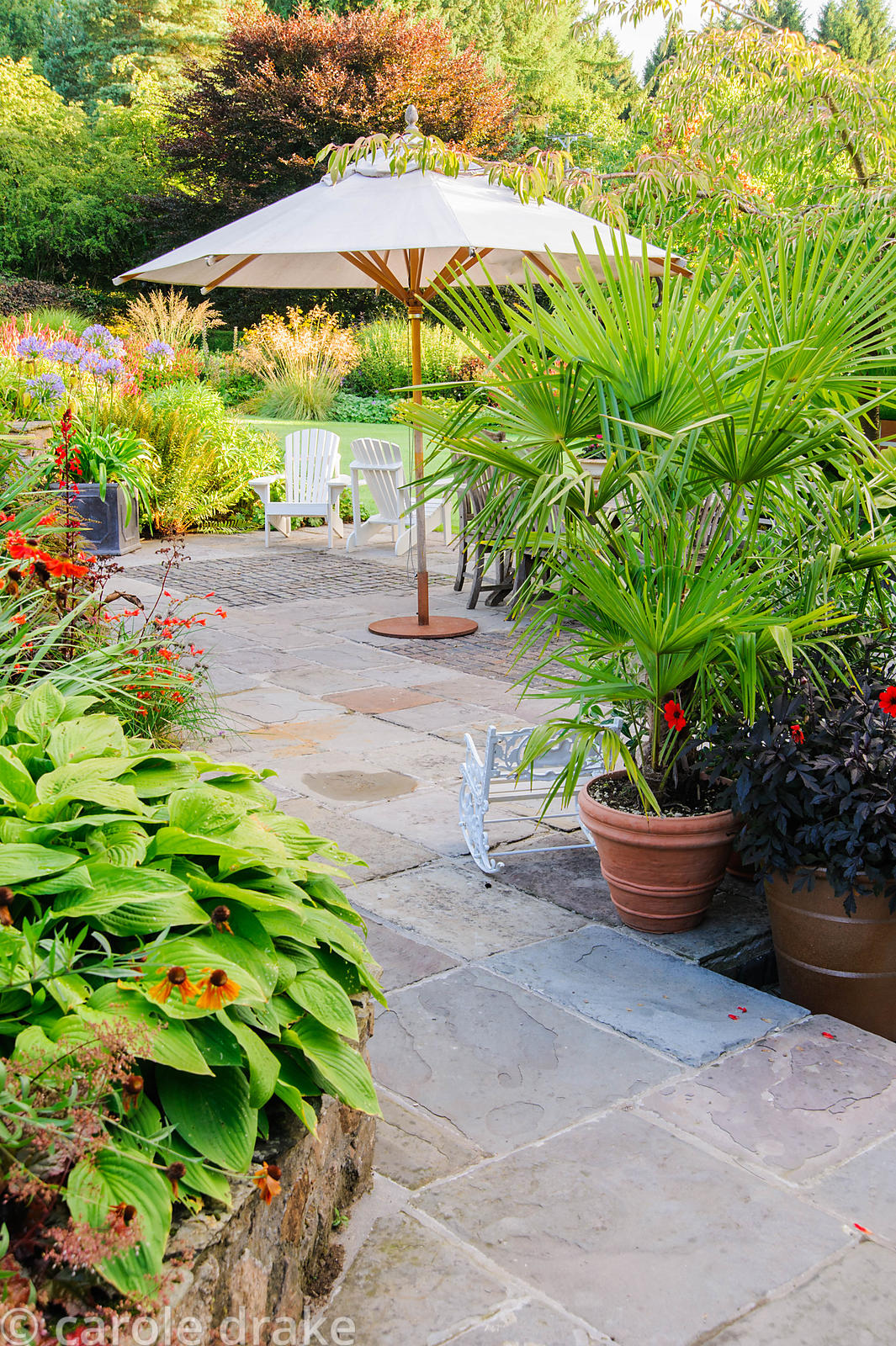 Terrace behind the house is framed by lush, colourful planting including palms, Dahlia 'Mystic Enchantment', hostas and red L...