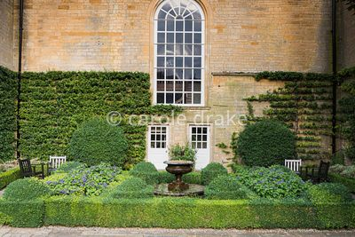 Fountain Garden at Bourton House, Moreton-in-Marsh in August shaped with box hedges planted with heliotrope and Cyperus alter...