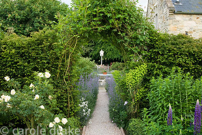 Path lined with catmint, Nepeta 'Six Hills Giant' leads toward white dovecot and bed of irises, from area featuring Rosa 'Agn...