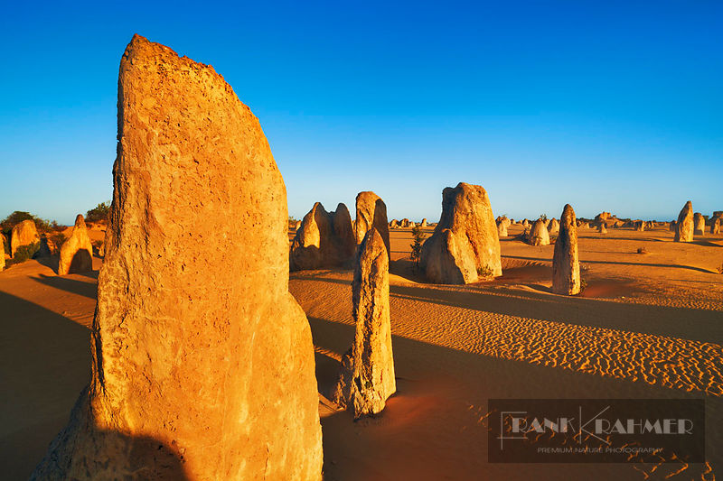 Erosion landscape Pinnacles - Australia, Australia, Western Australia, Midwest, Nambung Nationalpark, Pinnacles - digital - M...