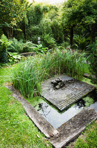Small formal pond in the woodland garden with ferns, hostas, grasses and rushes. The 'Garten' Garden, Lower Treculliacks Farm...
