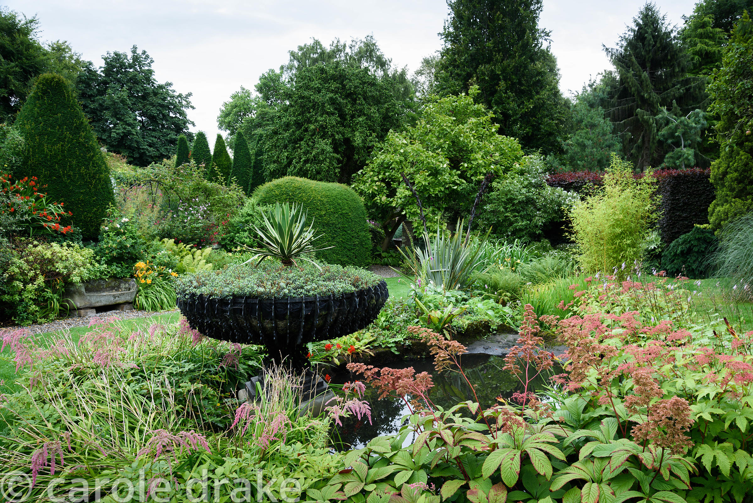 Pond in the Old Orchard with wrought iron basket urn planted with hebe and a variegated yucca surrounded by rodgersias, hosta...