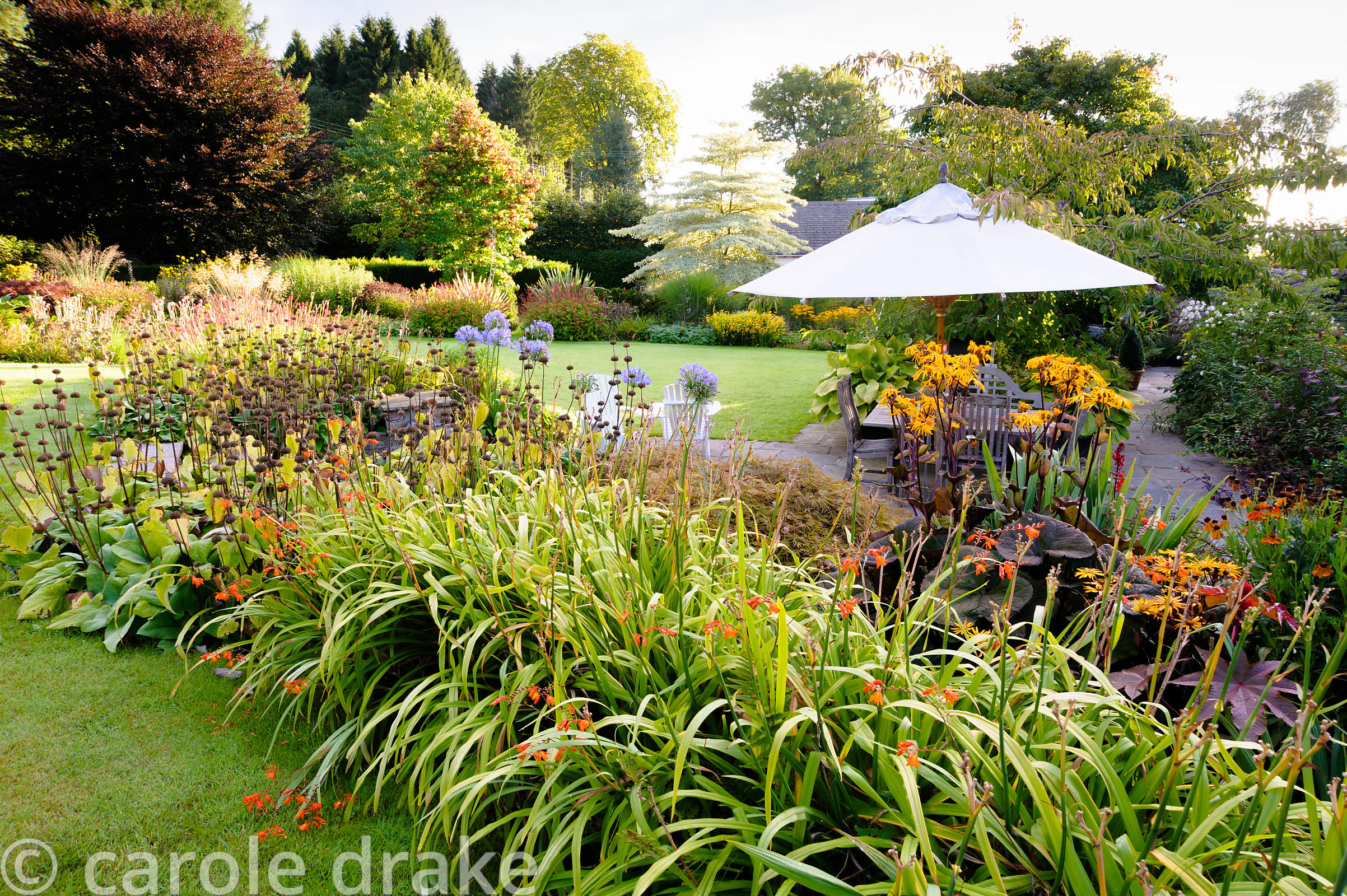Border above the terrace at the back of the house is planted with crocosmia, day lilies and phlomis.