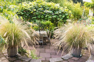 Sunken garden with vine covered arbour framed by pots of Chionochloa conspicua at Barn House, Gloucestershire in September