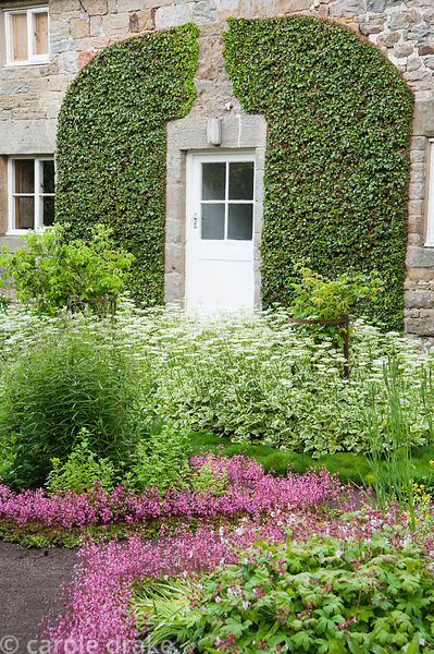 The Physic Garden features  beds edged with London Pride, Saxifraga 'Clarence Elliot', and planted with apothecaries plants i...