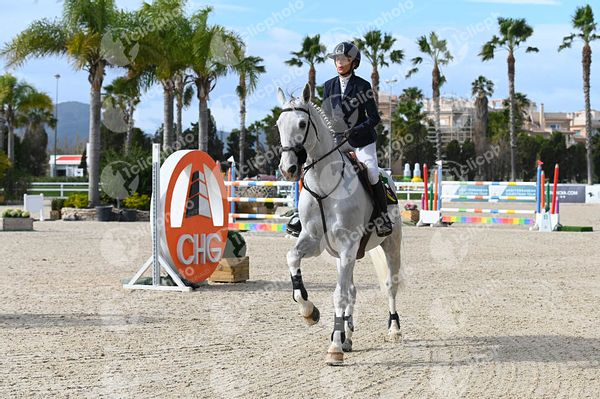 Oliva, Spain - 2021 January 31: CSI2, Bronze tour, 1m40 during CSI Mediterranean Equestrian Spring Tour 1.(photo: 1clicphoto)