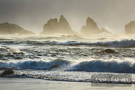 Ocean impression storm and high fog at Bandon Beach - North America, USA, Oregon, Coos, Bandon, Bandon Beach - digital