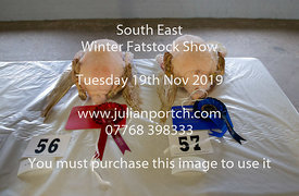 2019-11-19 South Eastern Prime Stock Winter Fayre