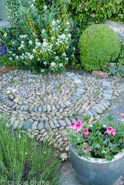 Pebble spiral amongst clipped box and lavender with pot of pink pelargonium. Private garden, Dorset, UK