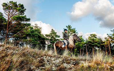 Woman riding horse in Thy, Denmark 19
