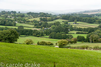 View of surrounding Herefordshire countryside. Rhodds Farm, Kington, Herefordshire, UK