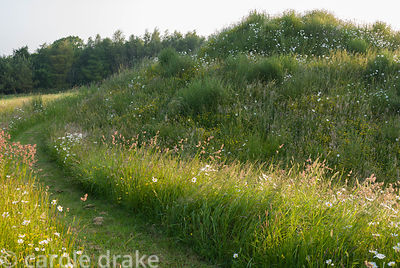 Millennium spiral mound created using spoil from pond. Private garden, Dorset, UK