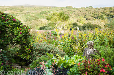 Stone figure with metal obelisk of bog garden behind surrounded by yellow Inula afghanica and purple loosestrife. Dyffryn Fer...