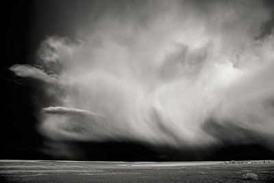 Stormfront | New Mexico | 2014