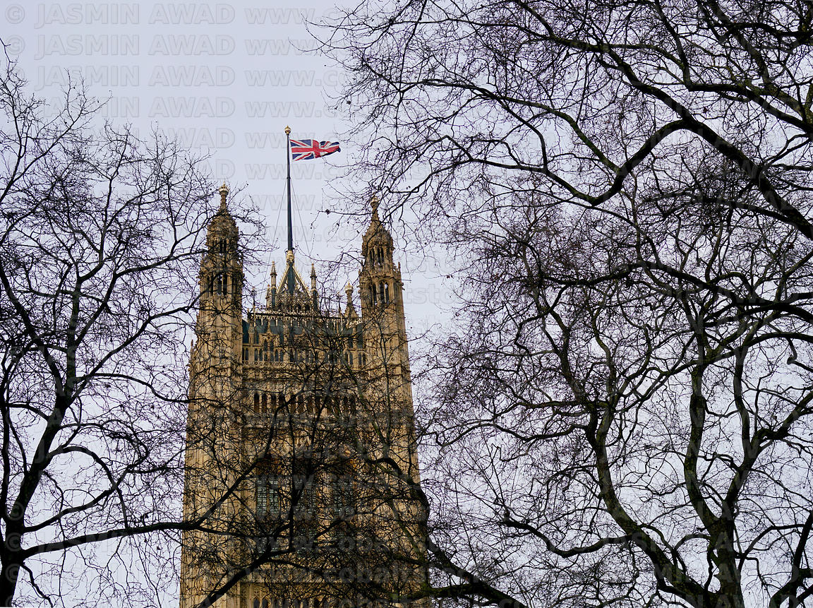 Houses of Parliament with Flag hidden behind bare trees in winter London, UK
