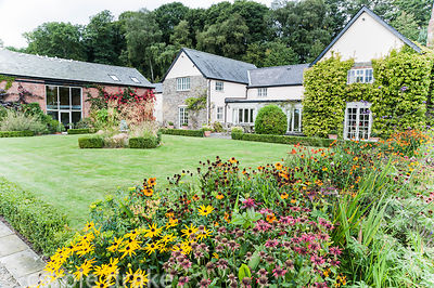 Herbaceous border of hot colours including heleniums, rudbeckias and crocosmias with box edged lawn, house and barn beyond. R...