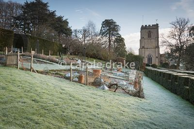 Formal vegetable garden at the Old Rectory, Netherbury in January with the tower of St Mary's Church as a backdrop