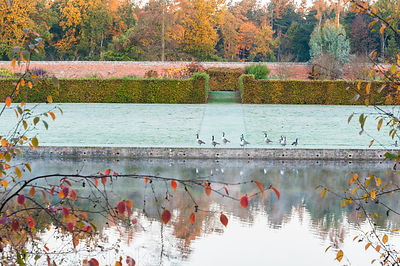 The Walled Garden seen across the Upper Pond at Marks Hall Garden in autumn