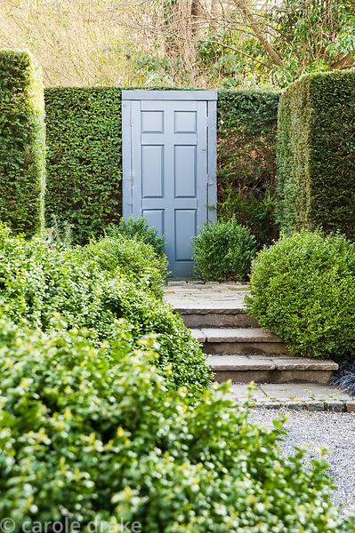 A false door framed by domes of loosely clipped box set into a yew 'wall' in a formal garden.