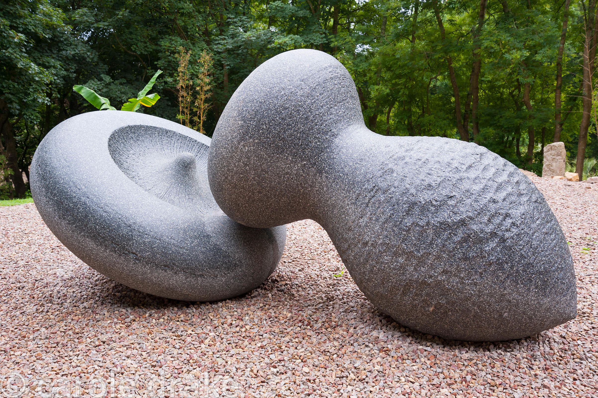 Slip of the Lip by Peter Randall-Page