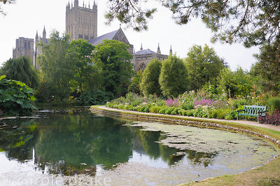 Large pond in the Wells Gardens where springs bubble to the surface surrounded by lush planting and benches to sit and enjoy ...