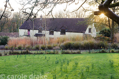 The Barn House, tucked down amongst layers of tall grasses and the colourful winter stems of dogwoods. Barn House, Brockweir ...