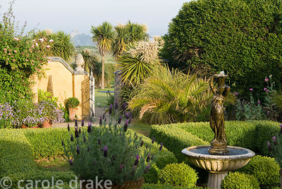 Box parterre with central water feature and pots of French lavender in foreground. Gate beyond reveals cordylines that frame ...