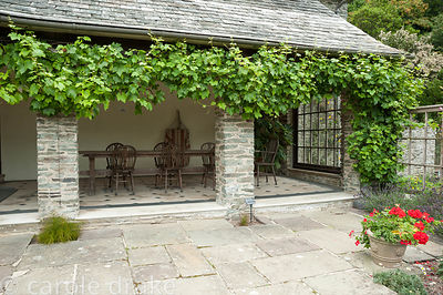 Loggia festooned with vine. Coleton Fishacre, Kingswear, Devon, UK