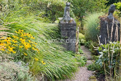 Owl and pussycat gate posts surrounded by lush planting including Rudbeckia fulgida var. deamii and grasses at Barn House, Gl...