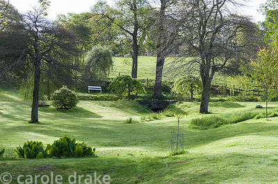 Undulating lawns in the area above the house lead up to a circular pond marked by a pair of Ulmus glabra 'Camperdownii.