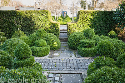 A formal garden featuring masses of clipped box topiary framed by yew hedges, paving that combines paving slabs and smaller s...