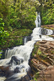 Waterfall  - Oceania, New Zealand, South Island, Otago, Clutha, Catlins, McLean Falls (Polynesia) - digital