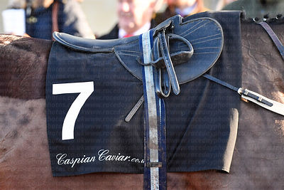 Caspian_Cavier_number_cloth_14122019-1