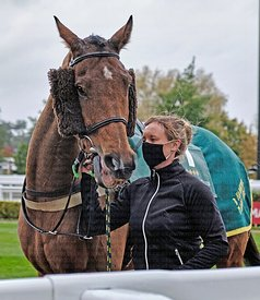 Cheltenham Showcase 24-10-2020