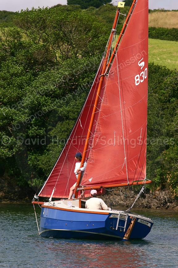 Salt Horse II, 830, Cornish Shrimper 19