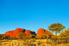 Rock formation Olgas - Australia, Australia, Northern Territories, Uluru-Kata-Tjuta National Park, Olgas (Red Center, Outback...