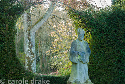 A flowering magnolia is glimpsed past the statue of an oriental priest through a circlur window cut into a yew hedge. Melplas...