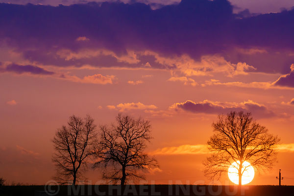 livre_chateauneuf_sunset_3_arbres