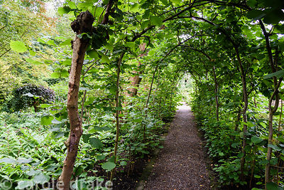 Hazel tunnel at York Gate Garden, Adel in July